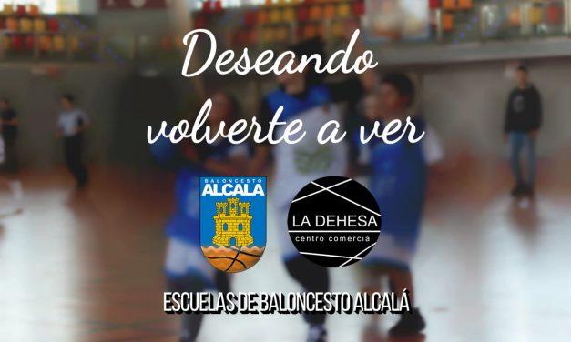 Vuelven las Escuelas de Baloncesto Alcalá